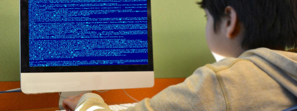 Programlama (Coding)